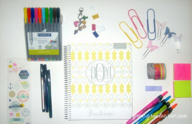 How I use my Plum Paper Planner ad planner accessories