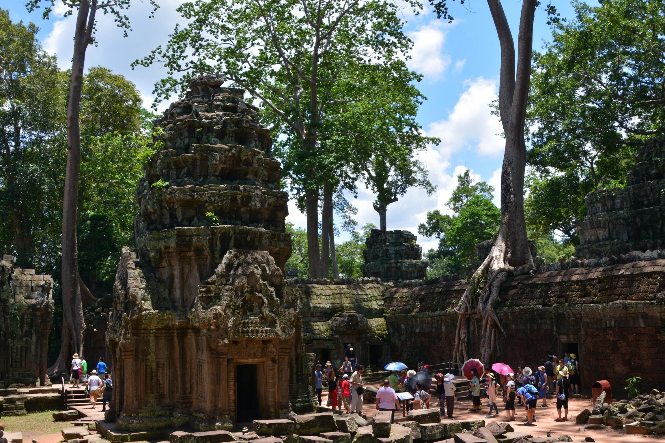 Jungle-clad ruins of Ta Prohm (from Tomb Raider movie)