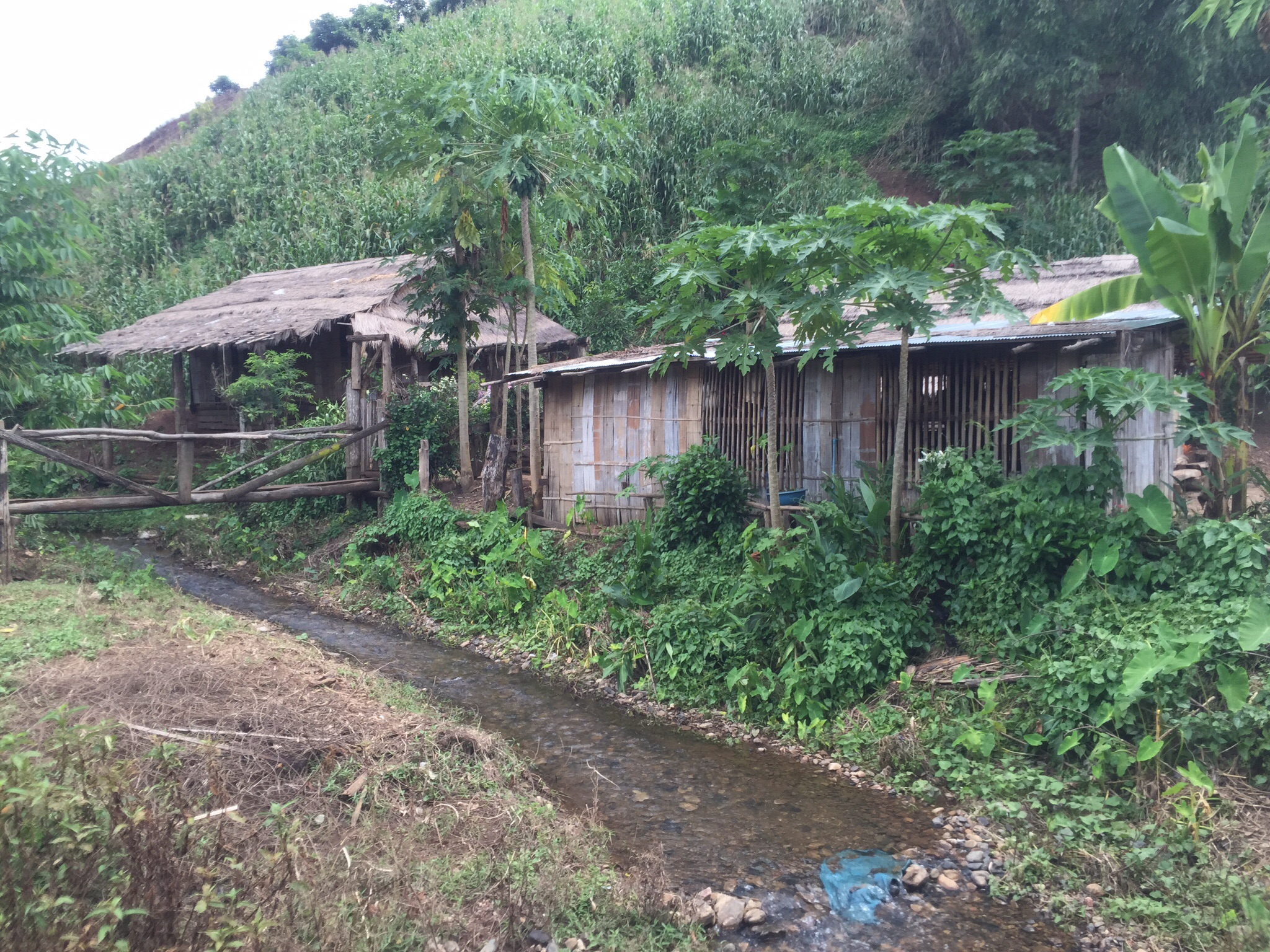 Hill tribe houses by a small stream along the hike.
