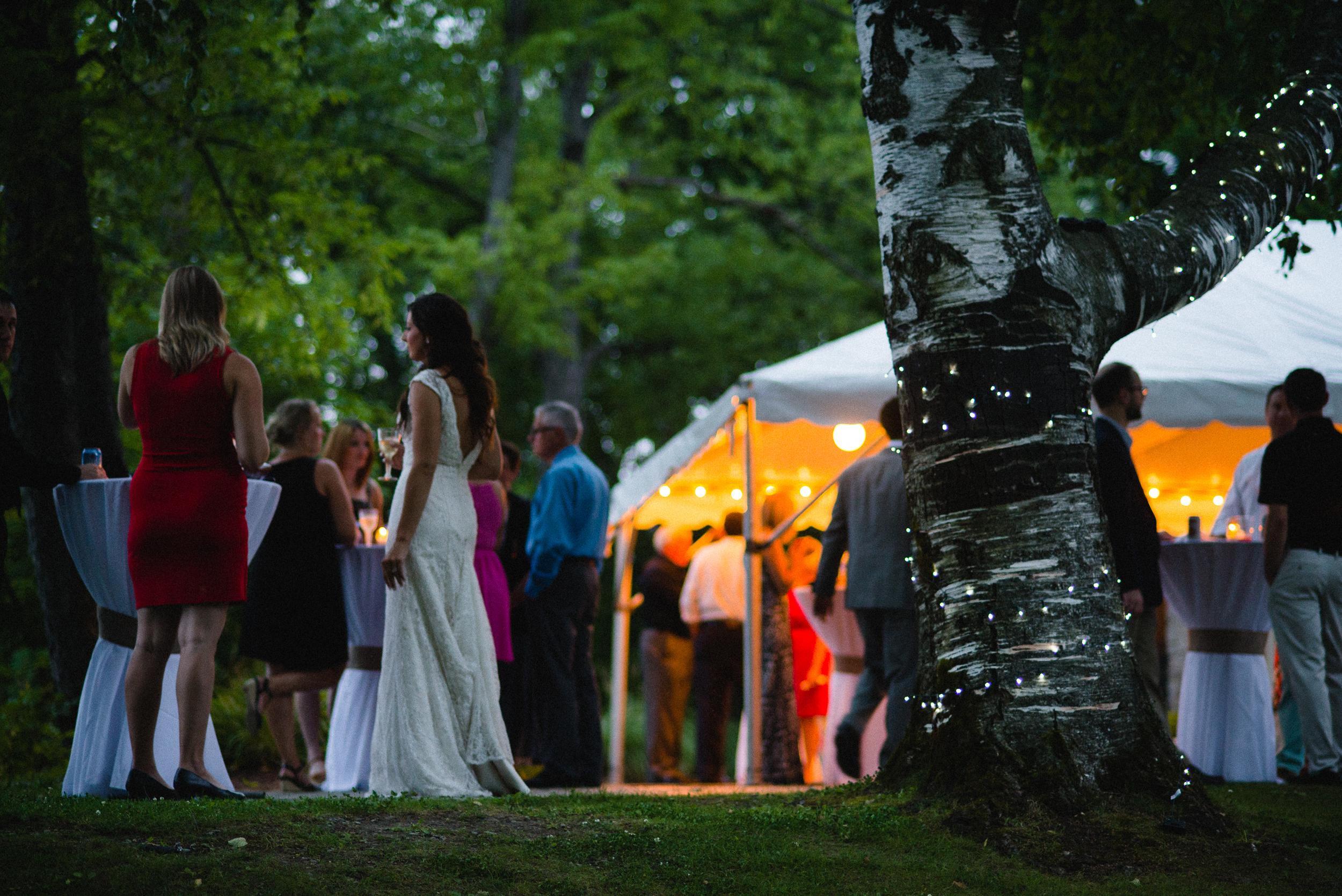 Outdoor Wedding Reception Lights Around Trees