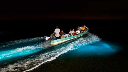 Bioluminescence-Tour-in-Hopkins-Belize.jpg