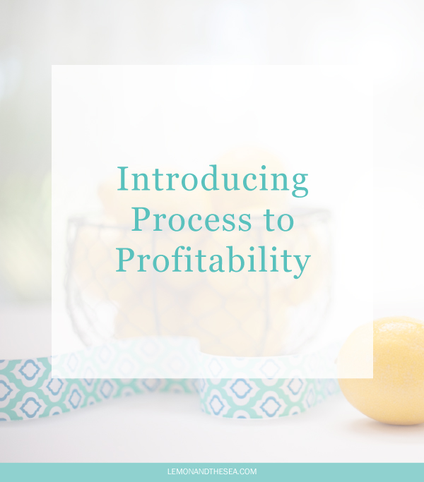 Introducing Process to Profitability | Lemon and the Sea