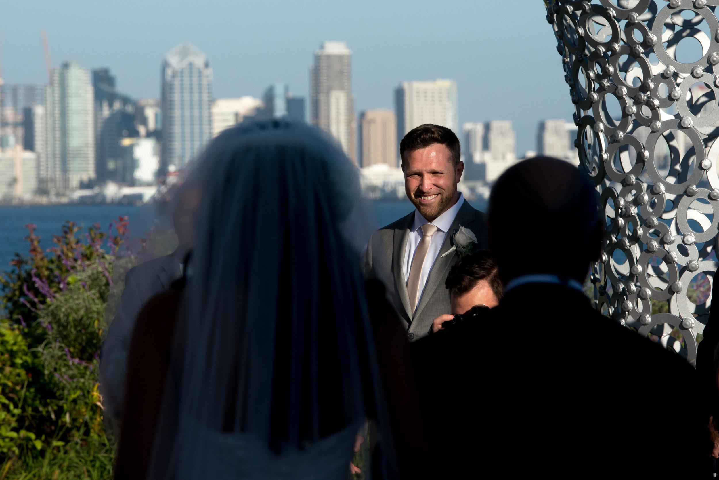 tom-hams-lighthouse-wedding-_D802968.jpg
