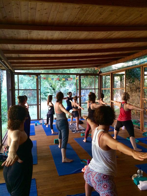 yoga healing nature retreat.jpg