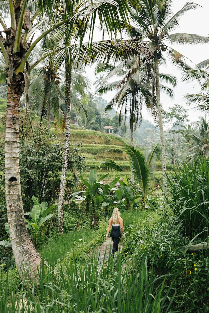 Bali Yoga Retreat.jpeg