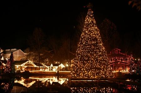 christmas tree at dollywood.jpg