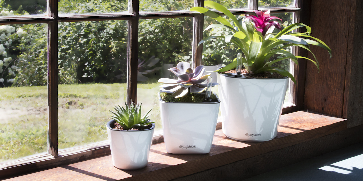 Aquaphoric Self-Watering Planters