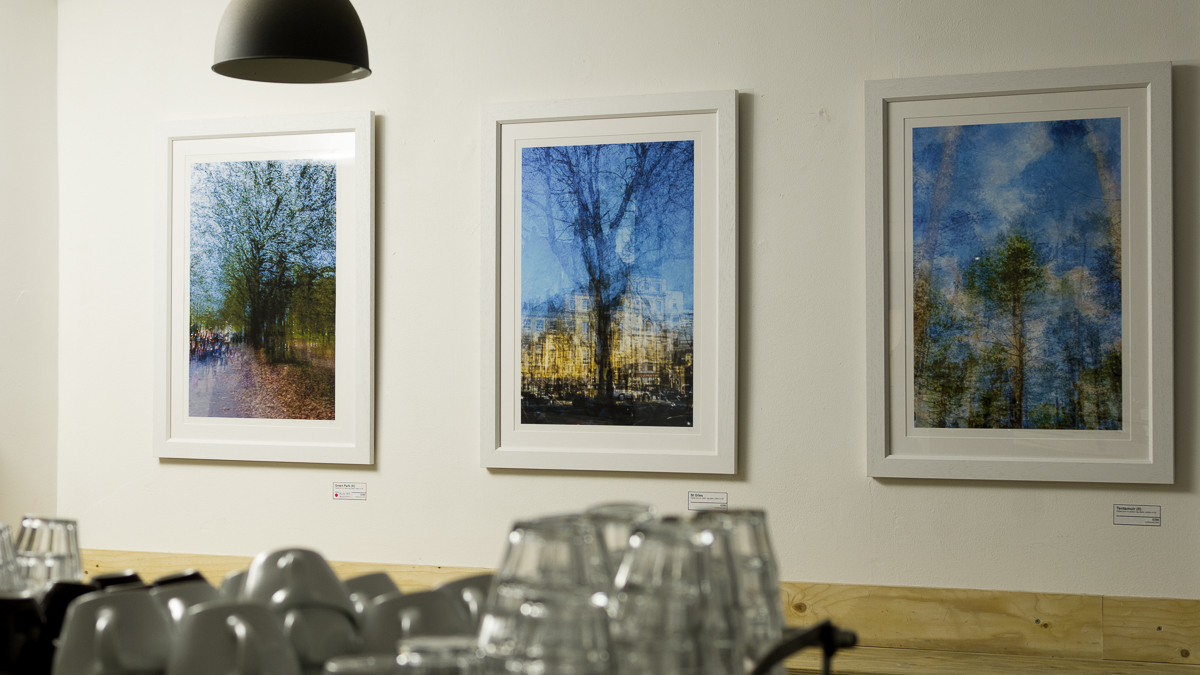 Exhibition Views (3 of 10).jpg