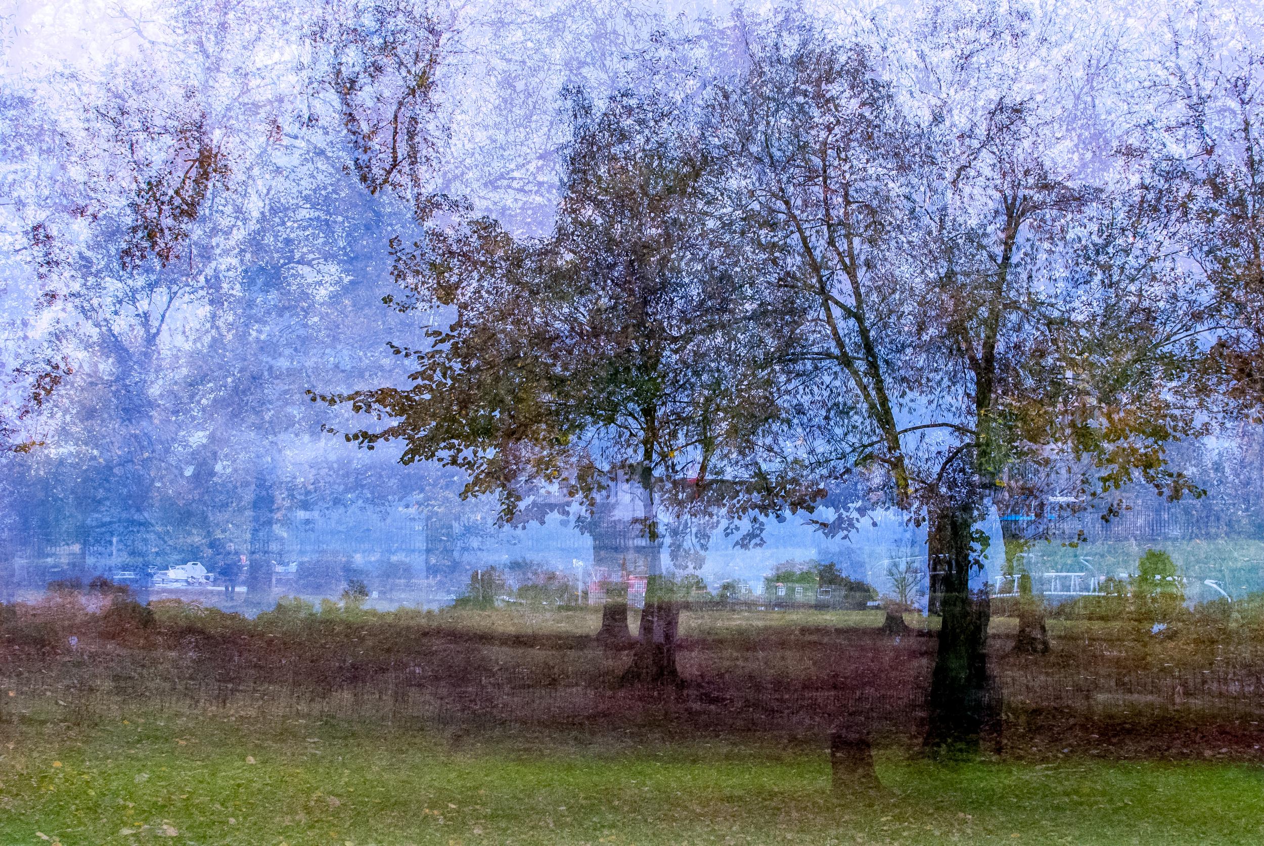 Christ Church Meadow (2).jpg