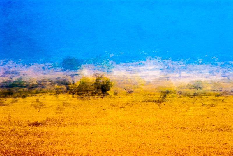 art slideshow-0282.jpg