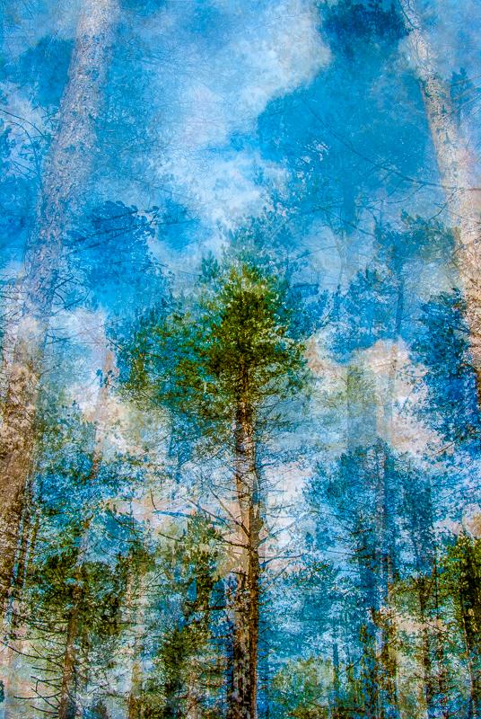 art slideshow-1379-3.jpg