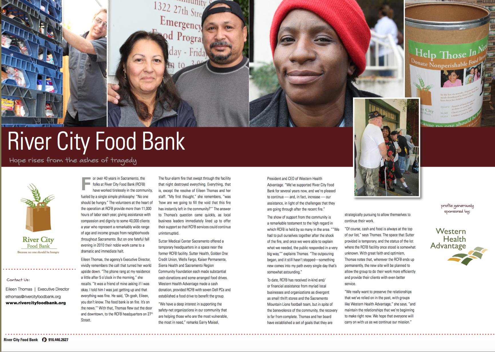 Sample white paper / fundraising brochure