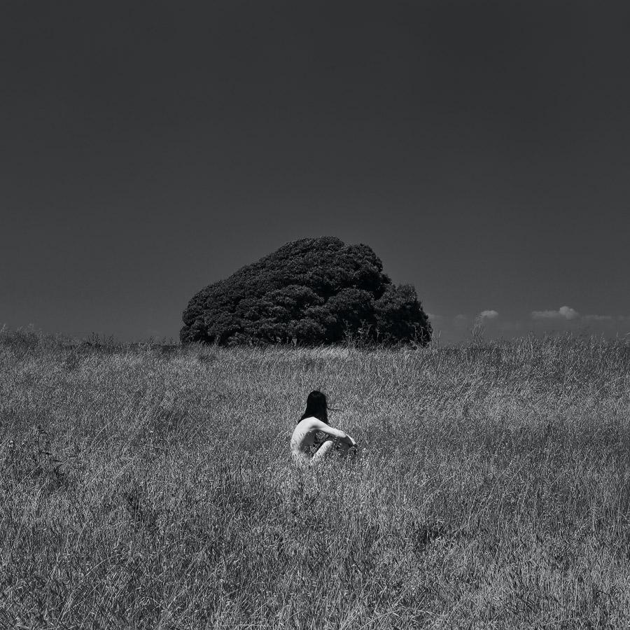 """White Silence"" series. California, 2015"