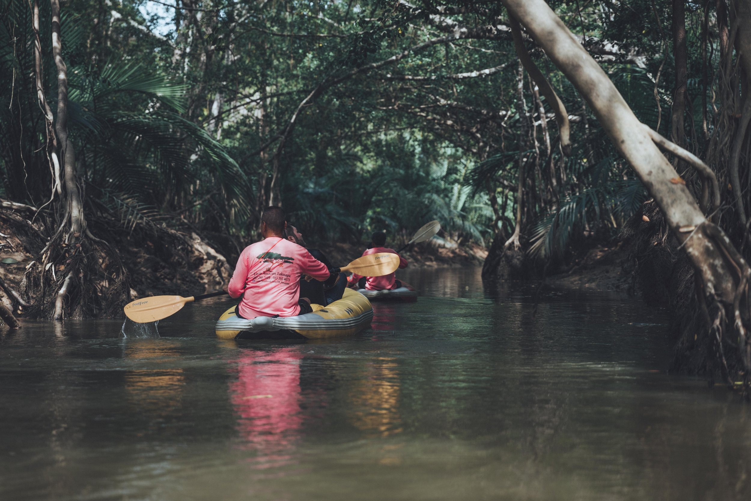 Paddling through the jungle