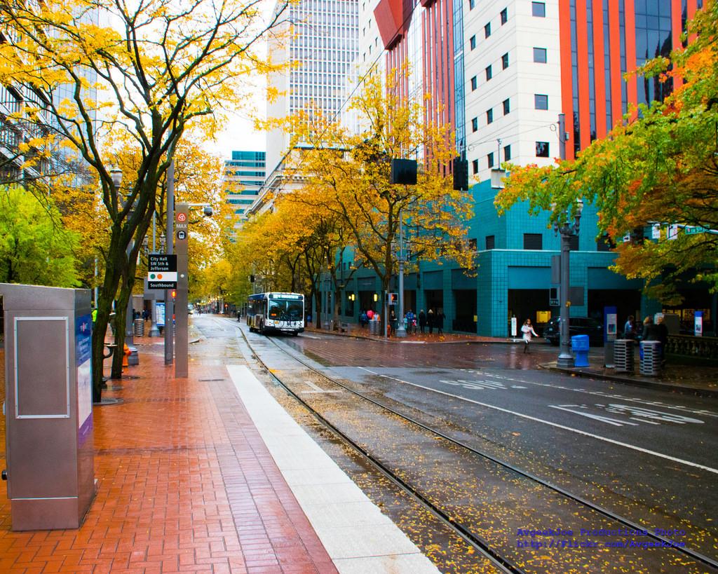 Portland 1.jpg