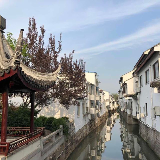 Down by the #canal a lovely day. . . . . #china #shanghai #water #sunny #city #reflection #canal #nofilter #asia #beautiful #instagood #bluesky #travel #bbctravel