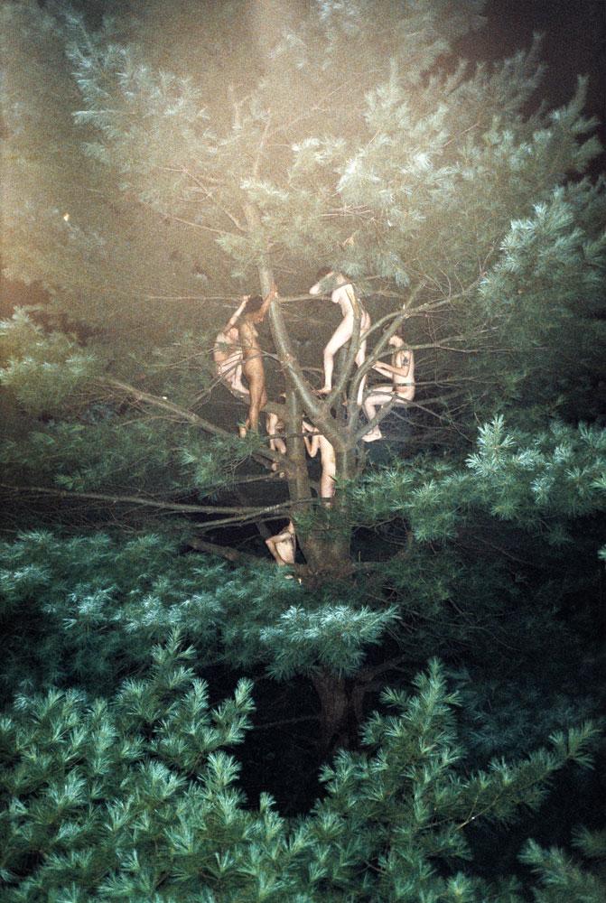 瑞安.麥克金利作品《Tree #3》。(圖片來源/Ryan McGinley官網)