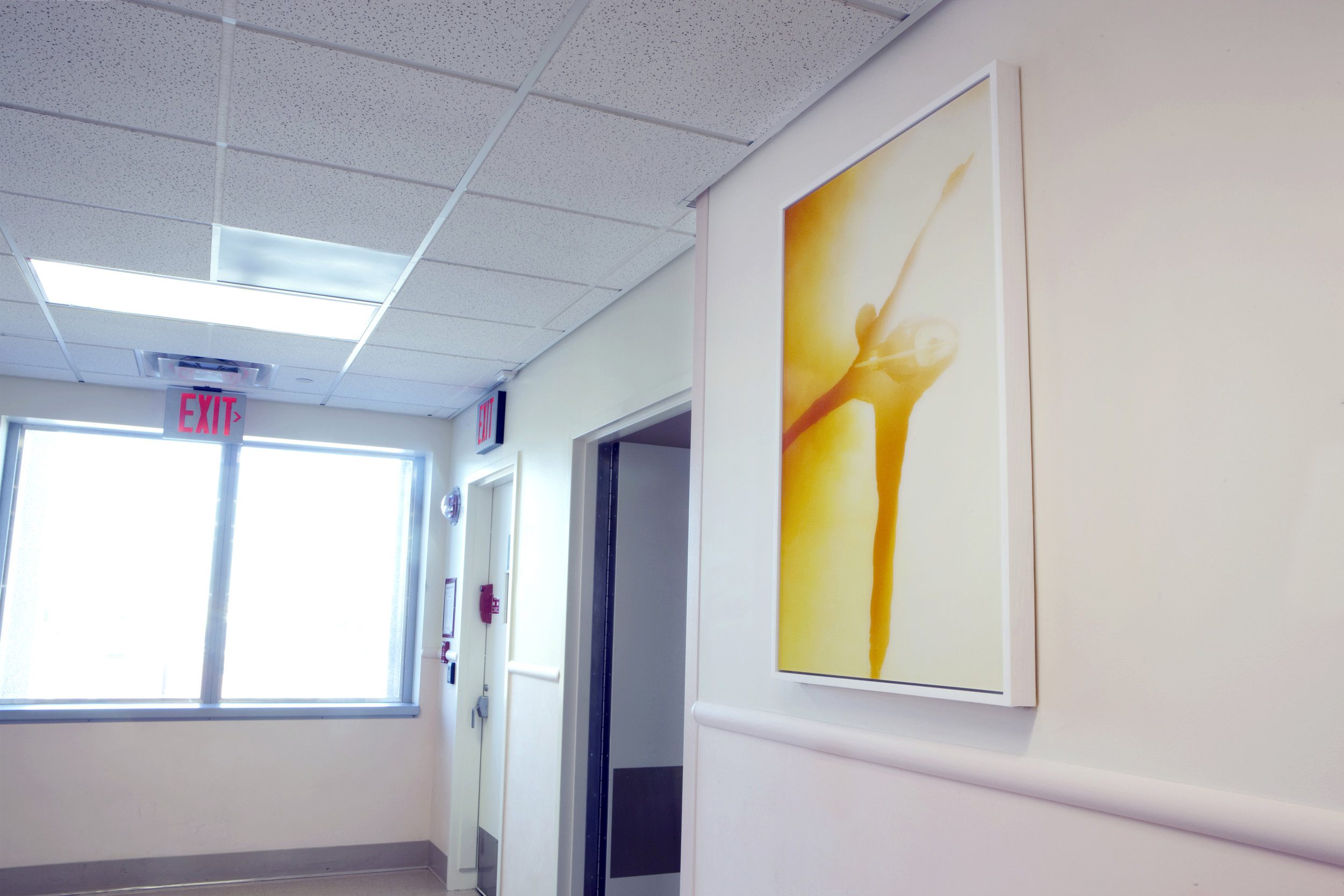 re2012_RxArt_Kings_County_Hospital_Evan Lysacek.jpg