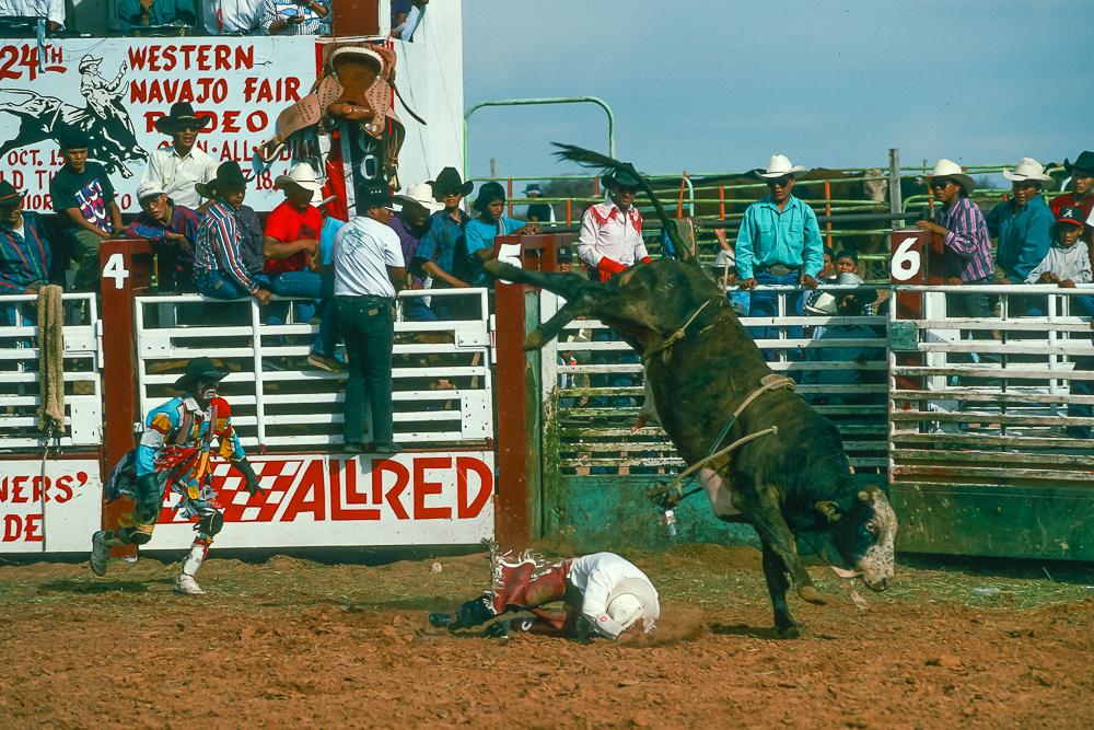 Bullrider Down!  Bull Fighter In Action!