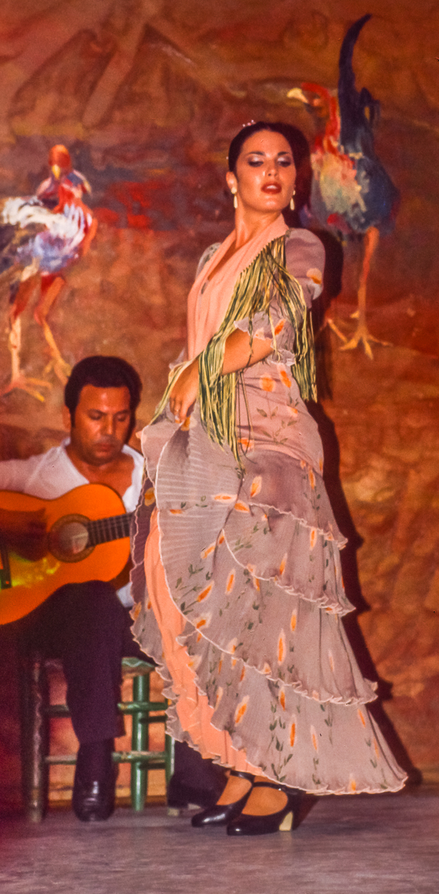 Flamenco Dancer with her Guitarist