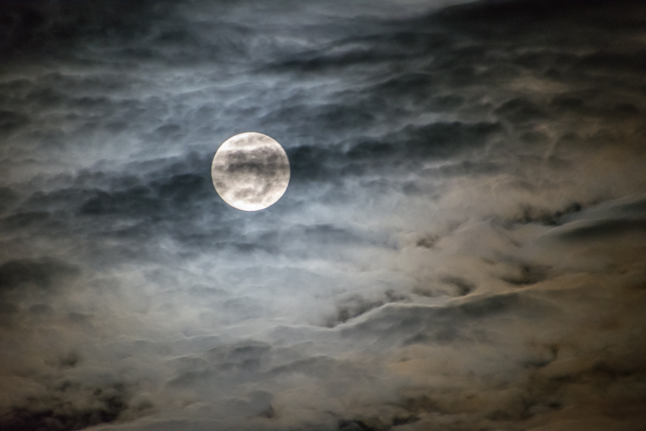 Jones_T.Night-7255.jpg