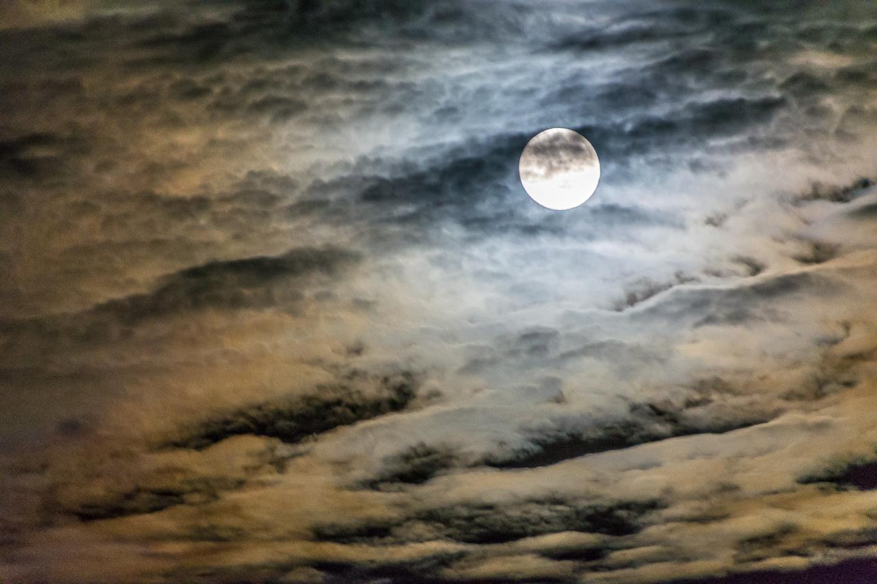 Jones_T.Night-7256.jpg