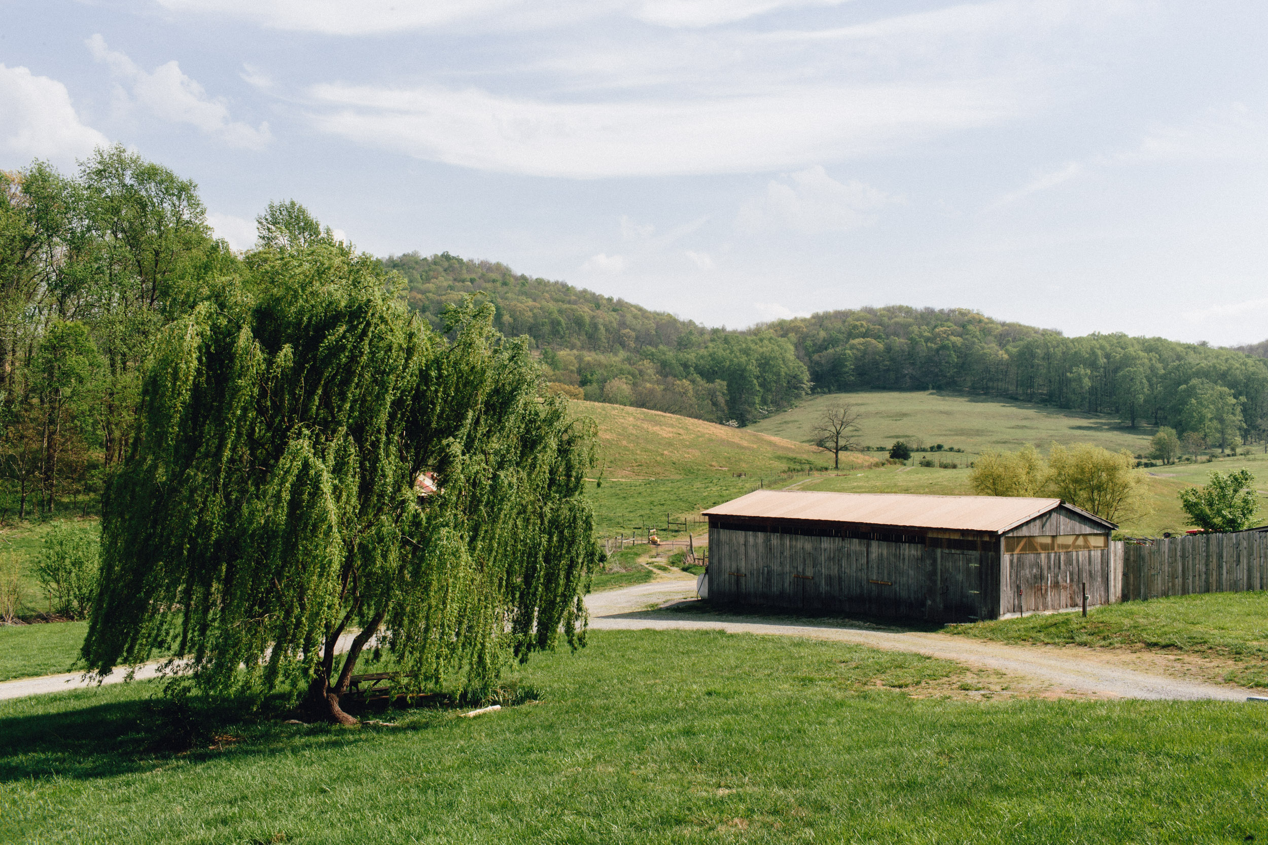 Beautiful landscapes at Short Mountain Farm, which houses Canon County's first, and only primarily Moonshine and Bourbon small-batch distillery.