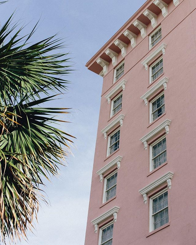 Do you love food? Have you been to Charleston? Come get inspired. Lots of pretty little things on this post. Come delight! Link in profile 🌴💒