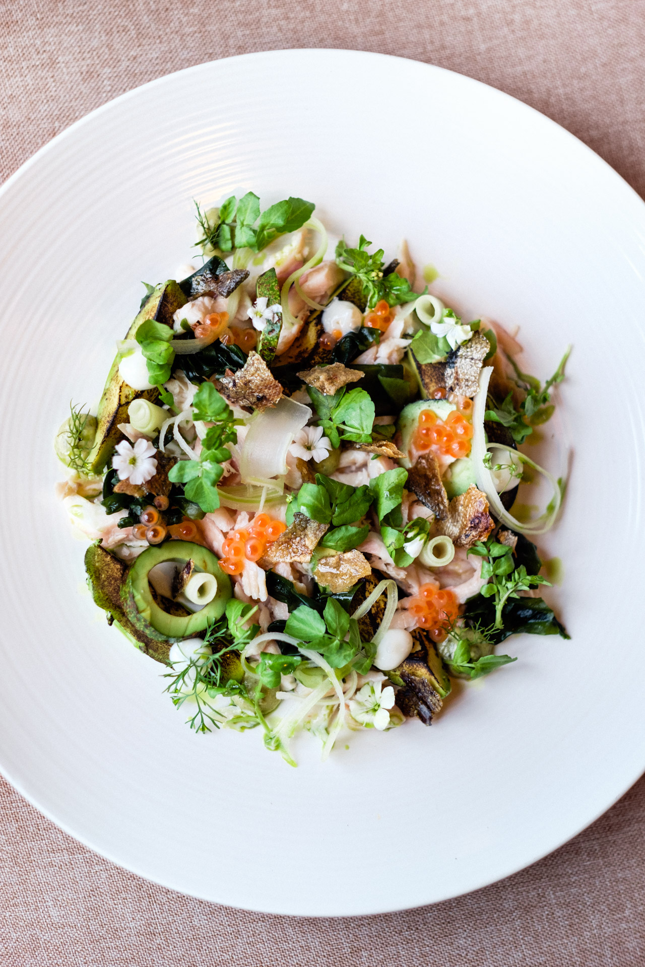 Trucha Serrana Ahumada, aguacate, apio, hinojo, hueva de pescado, y alcaparras // Smoked Trout salad, heirloom avocado, celery, fish roe, fennel and capers