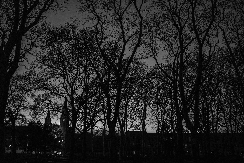 Brklyn_McCarem_Park_Skyline-005.jpg