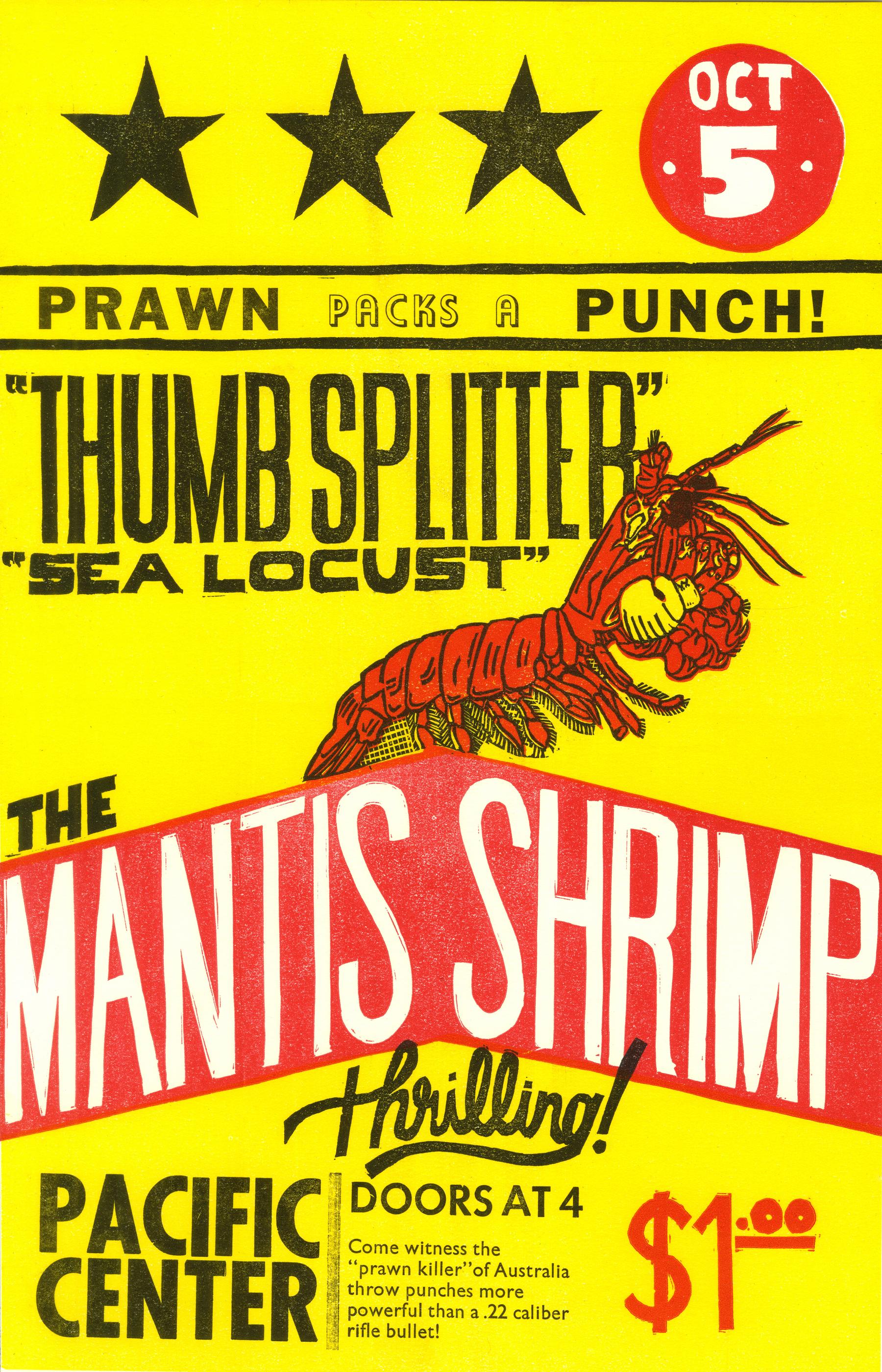 Mantis Champ