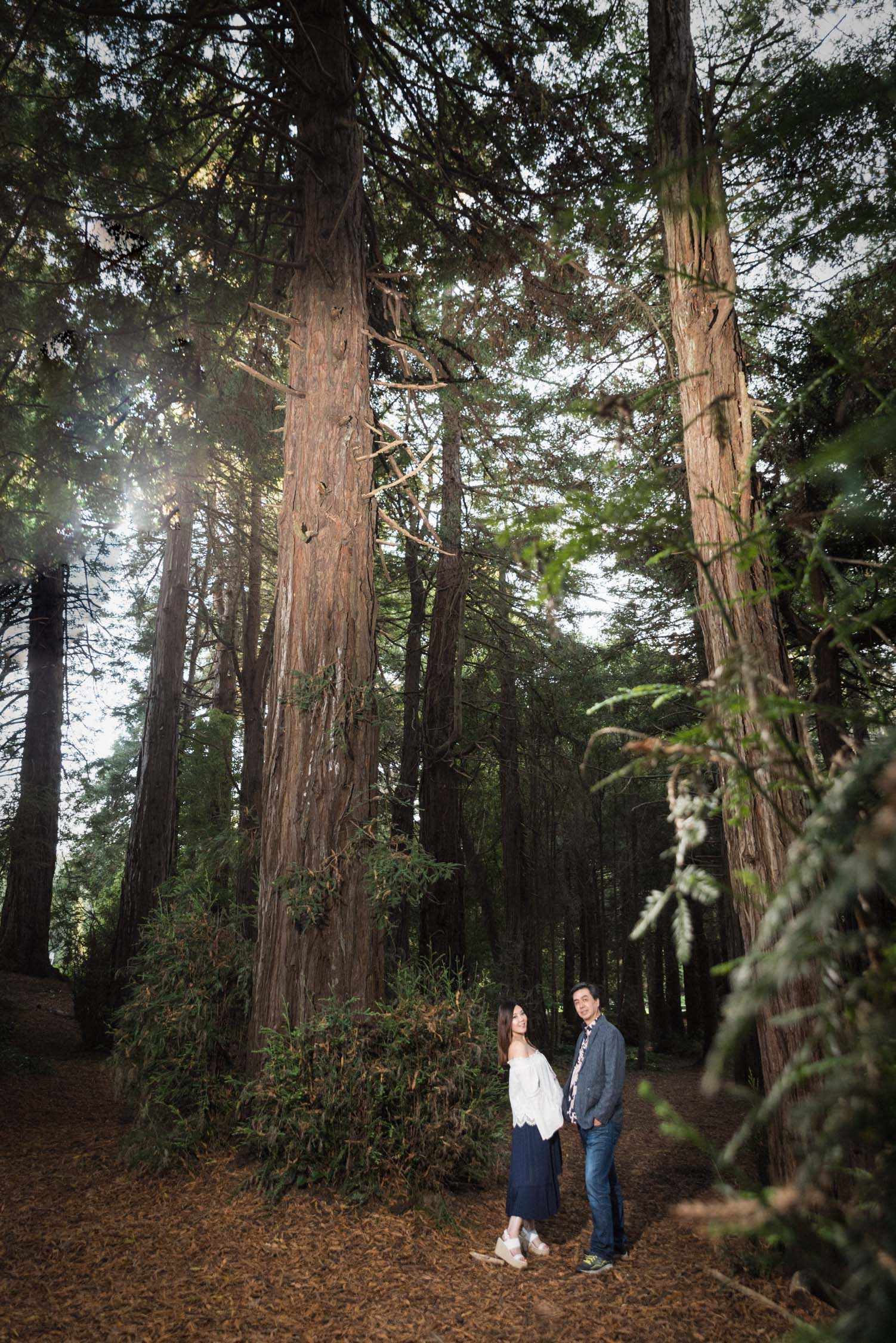 20_goldengatepark_maternity_photographer.jpg