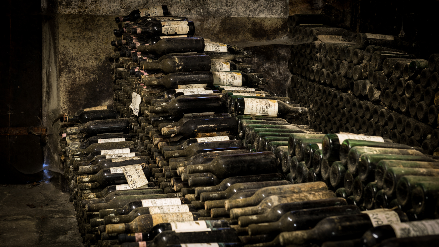 Italy : Tuscany : In the cellar at Selvapiana in Chianti Rufina