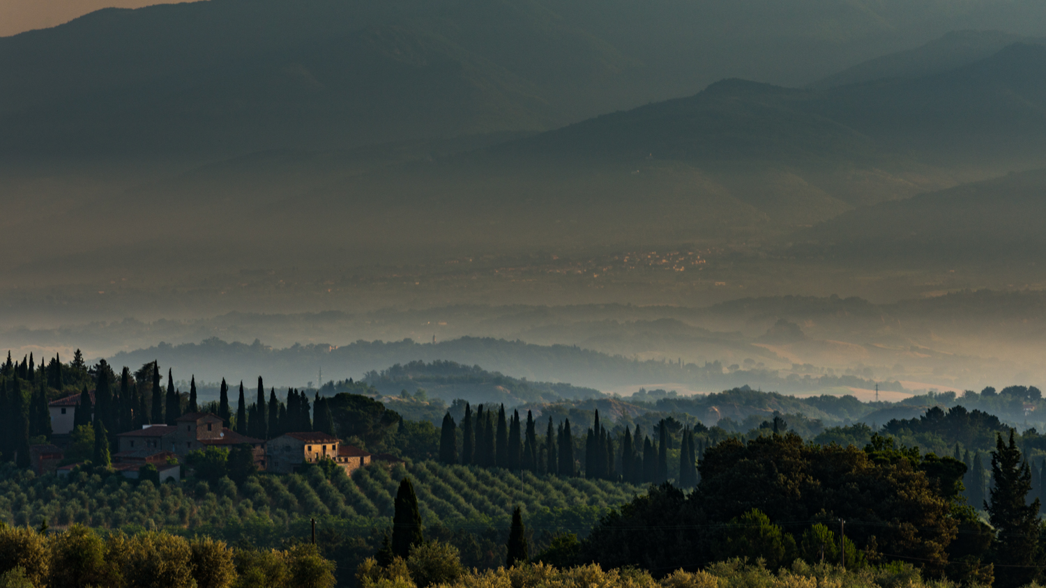 Italy : Tuscany : An intensely hot and humid morning in Chianti Classico