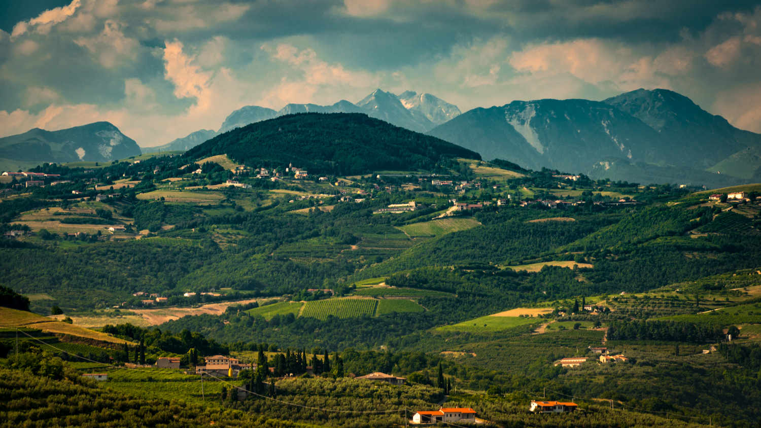 Italy : Veneto : Vineyards and mountains surrounding Tenuta Sant'Antonio's estate in Lavagno
