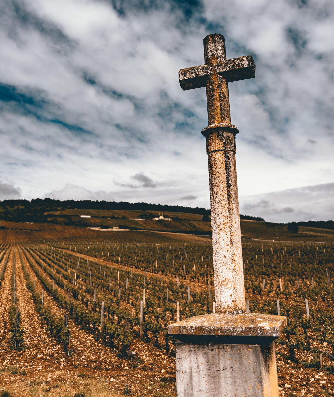 Burgundy : Cote de Nuits : Vosne-Romanée : La Tâche