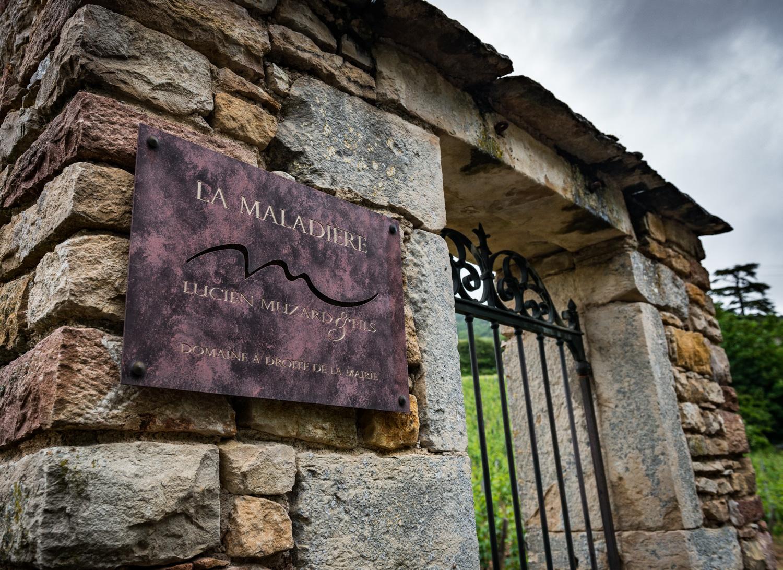 Burgundy : Cote de Beaune : Santenay : La Maladière