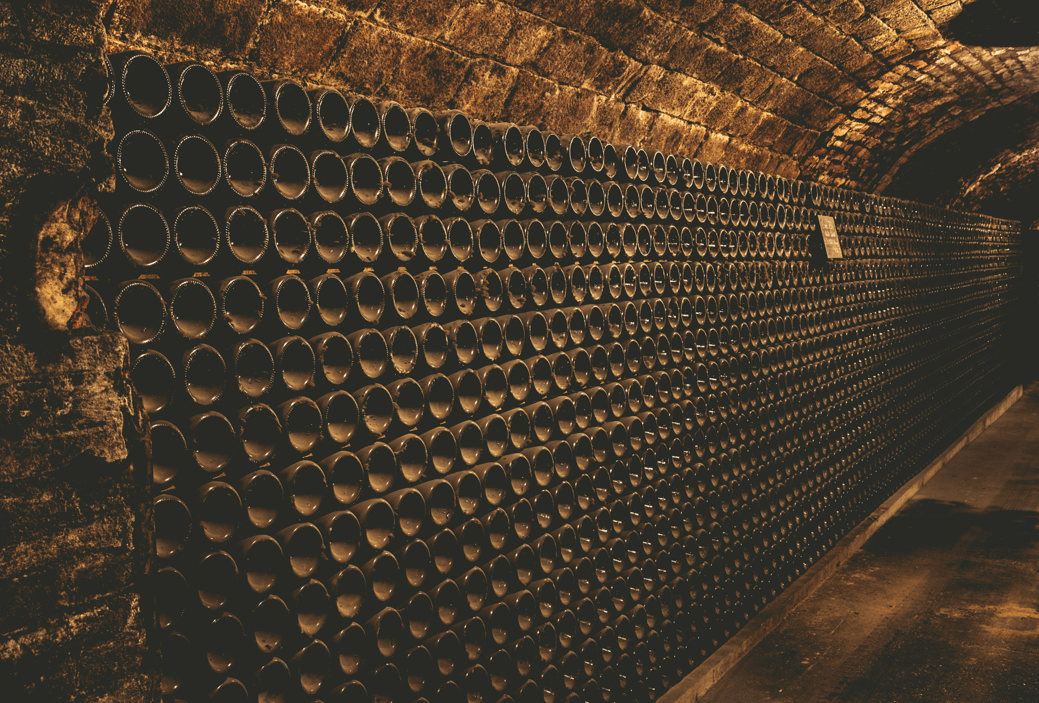 France : Champagne : In the cellar at Jacquesson