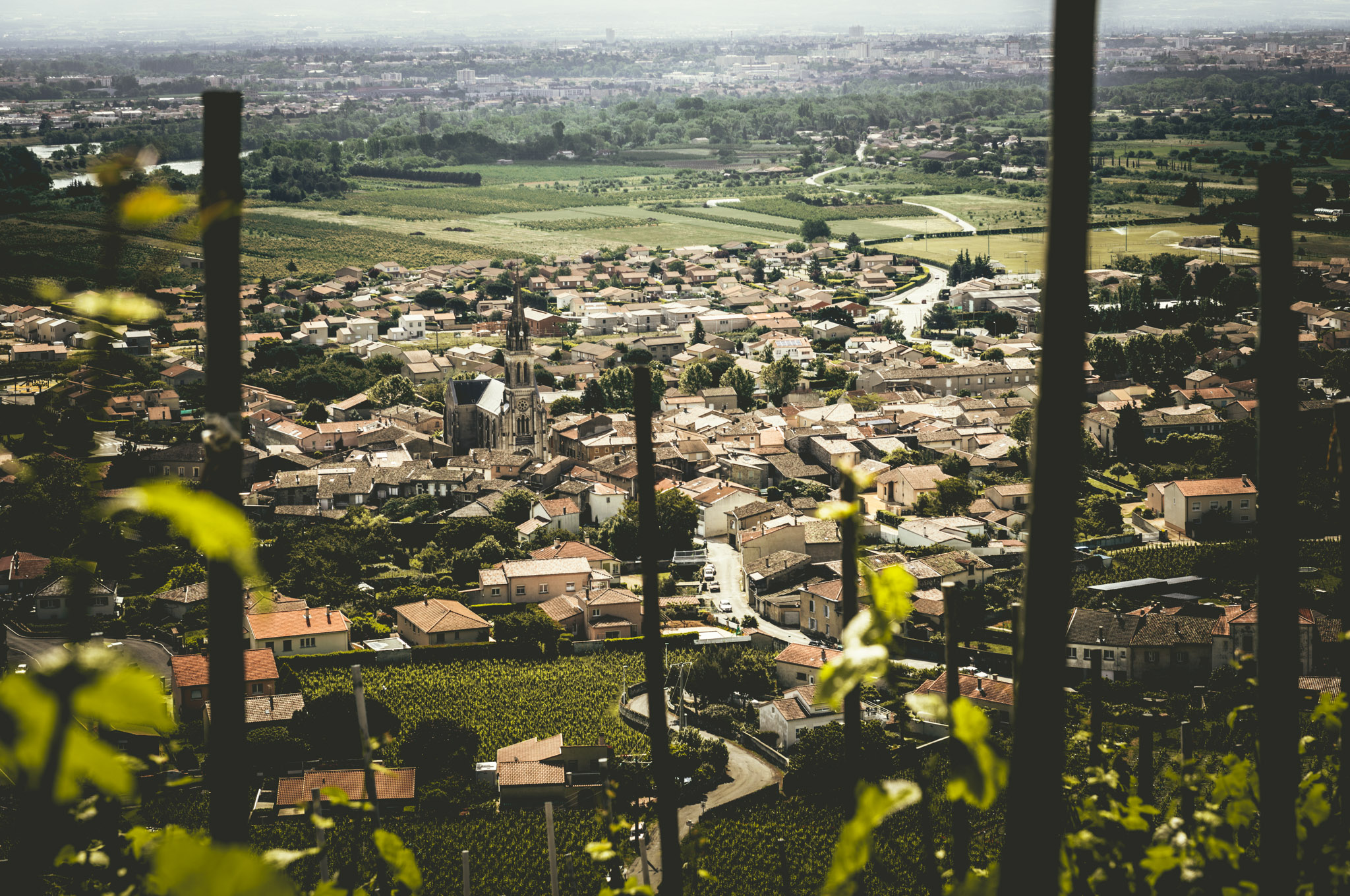 France : Northern Rhone : Overlooking Cornas from high up in its vineyards