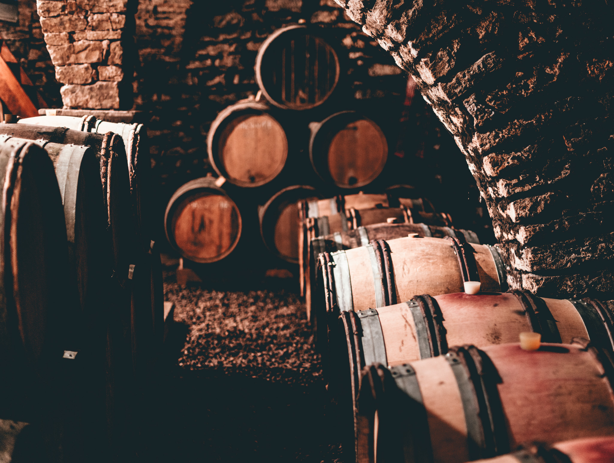 France : Jura : In the cellar at Jean-Luc Mouillard