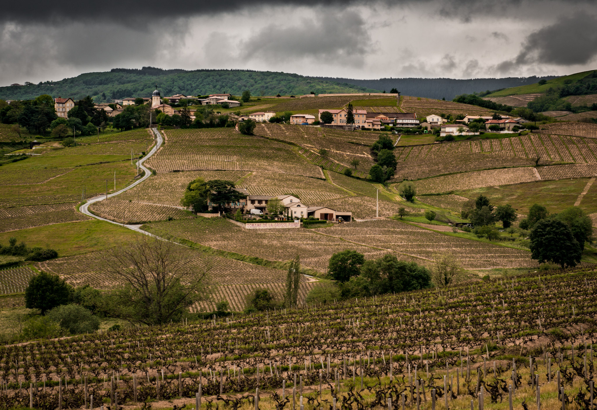 France : Beaujolais : Chiroubles