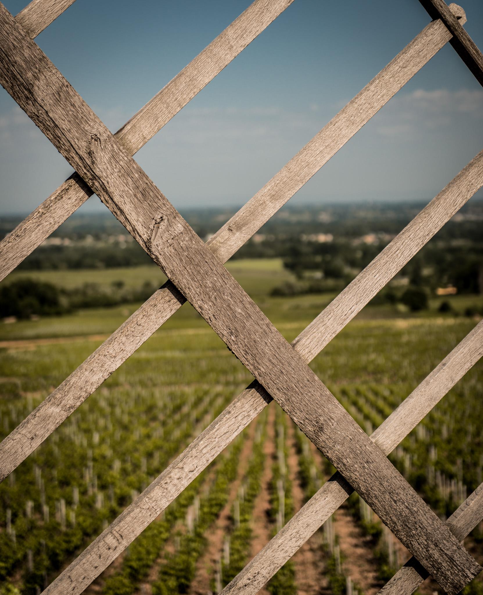 France : Beaujolais : Moulin-à-Vent