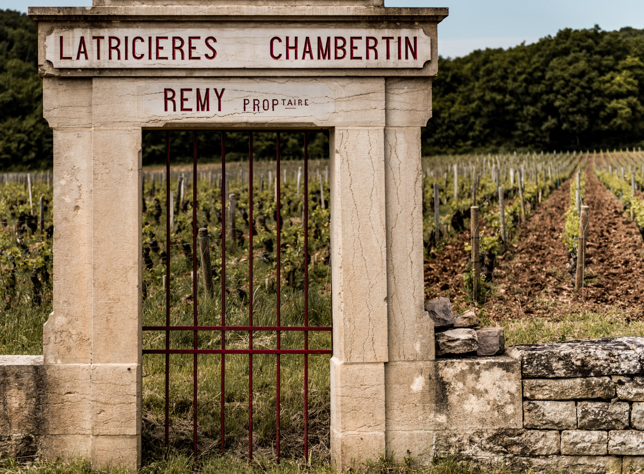 Burgundy : Cote de Nuits : Gevrey-Chambertin : Latricieres Chambertin