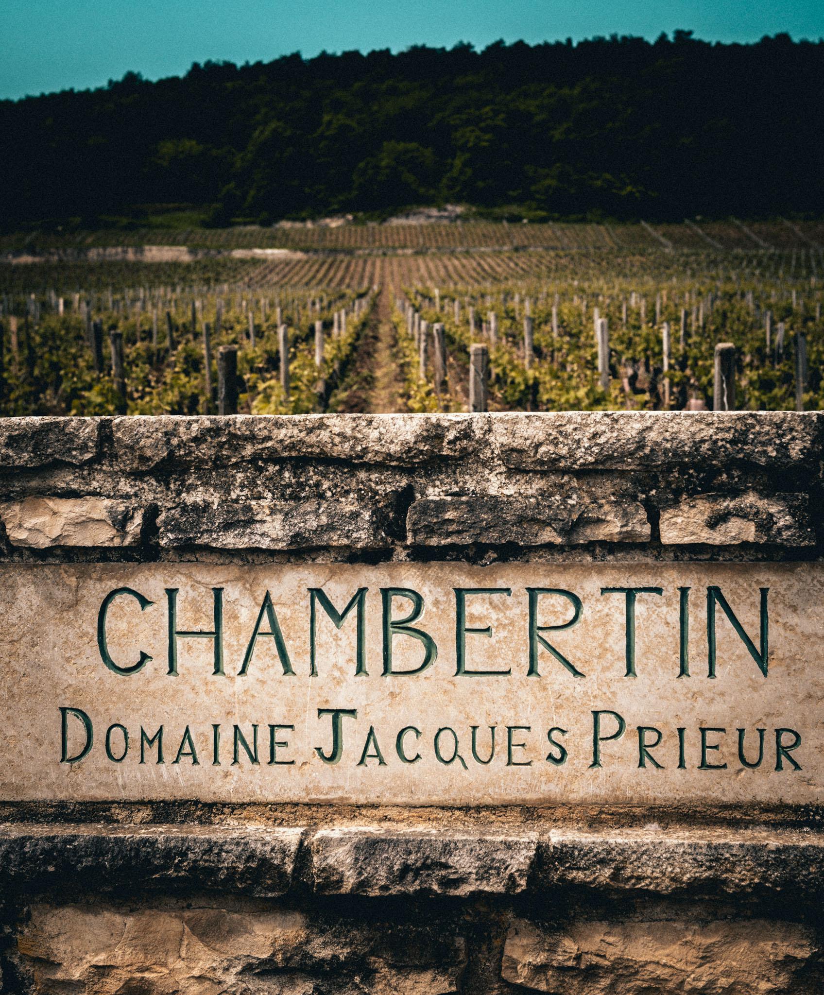 Burgundy : Cote de Nuits : Gevrey-Chambertin : Chambertin grand cru