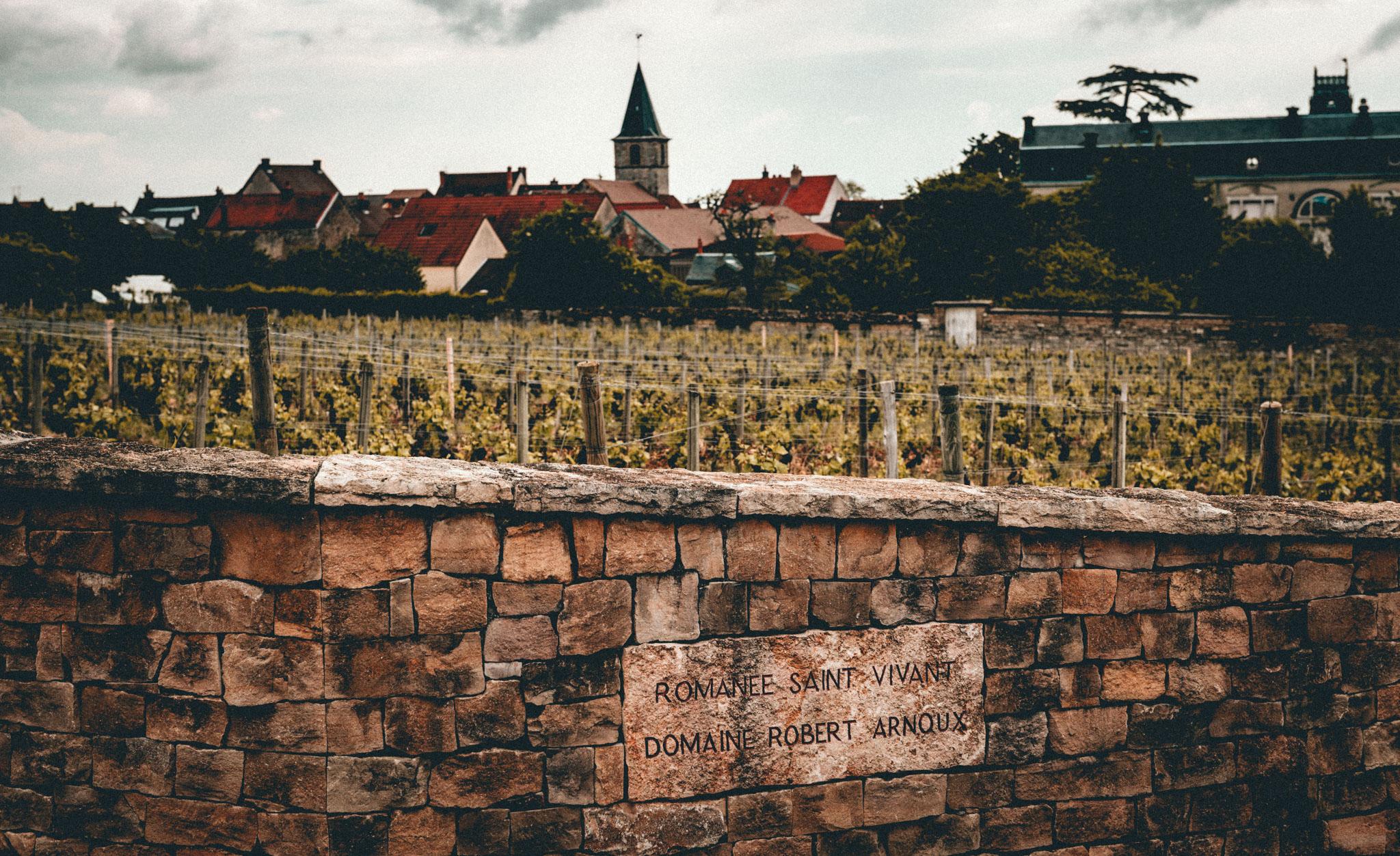Burgundy : Cote de Nuits : Vosne-Romanée : Romanée-Saint-Vivant