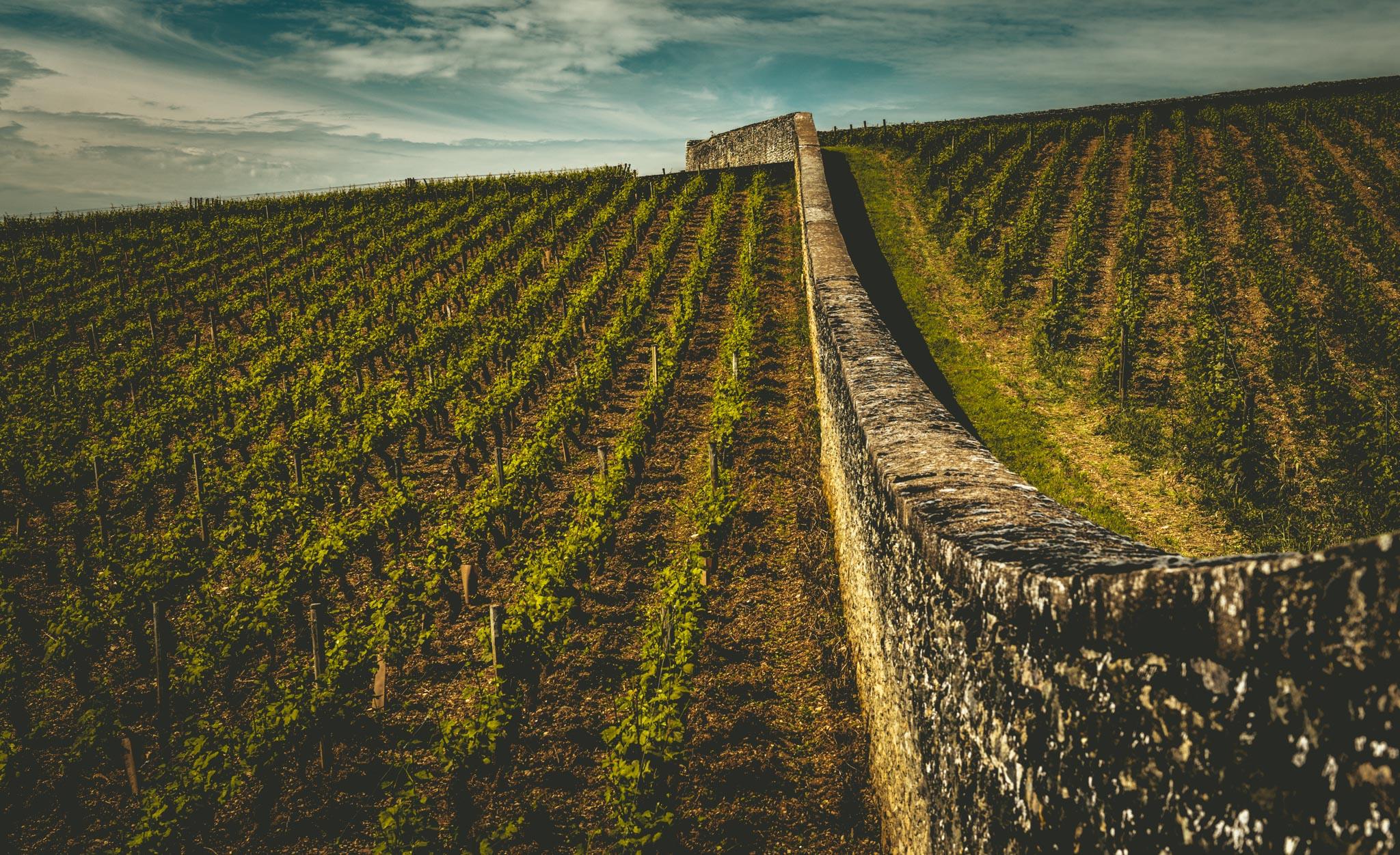 Burgundy : Cote de Beaune : Volnay : En Verseuil & Le Village
