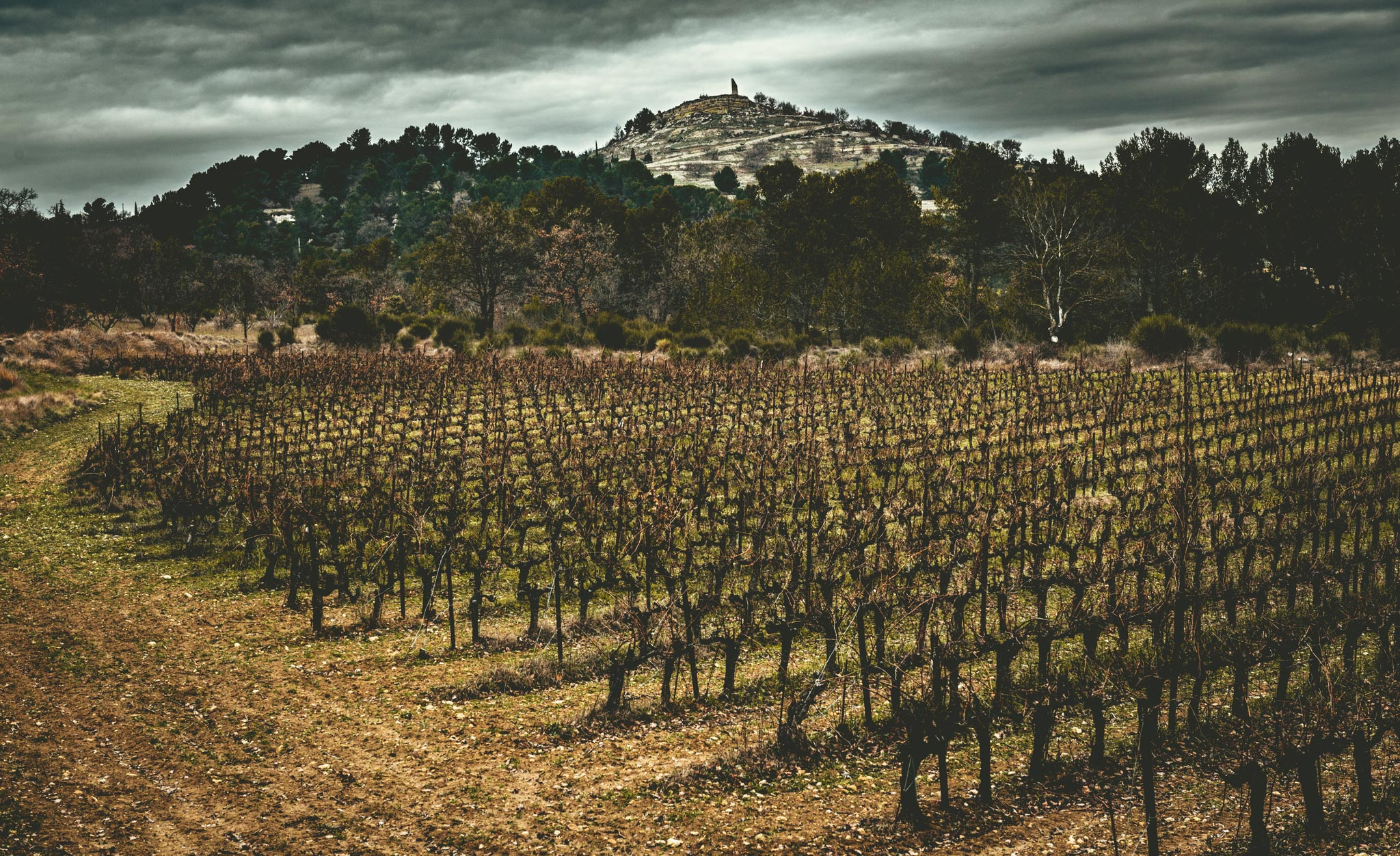 France : Provence : Coteaux-d'Aix-en-Provence