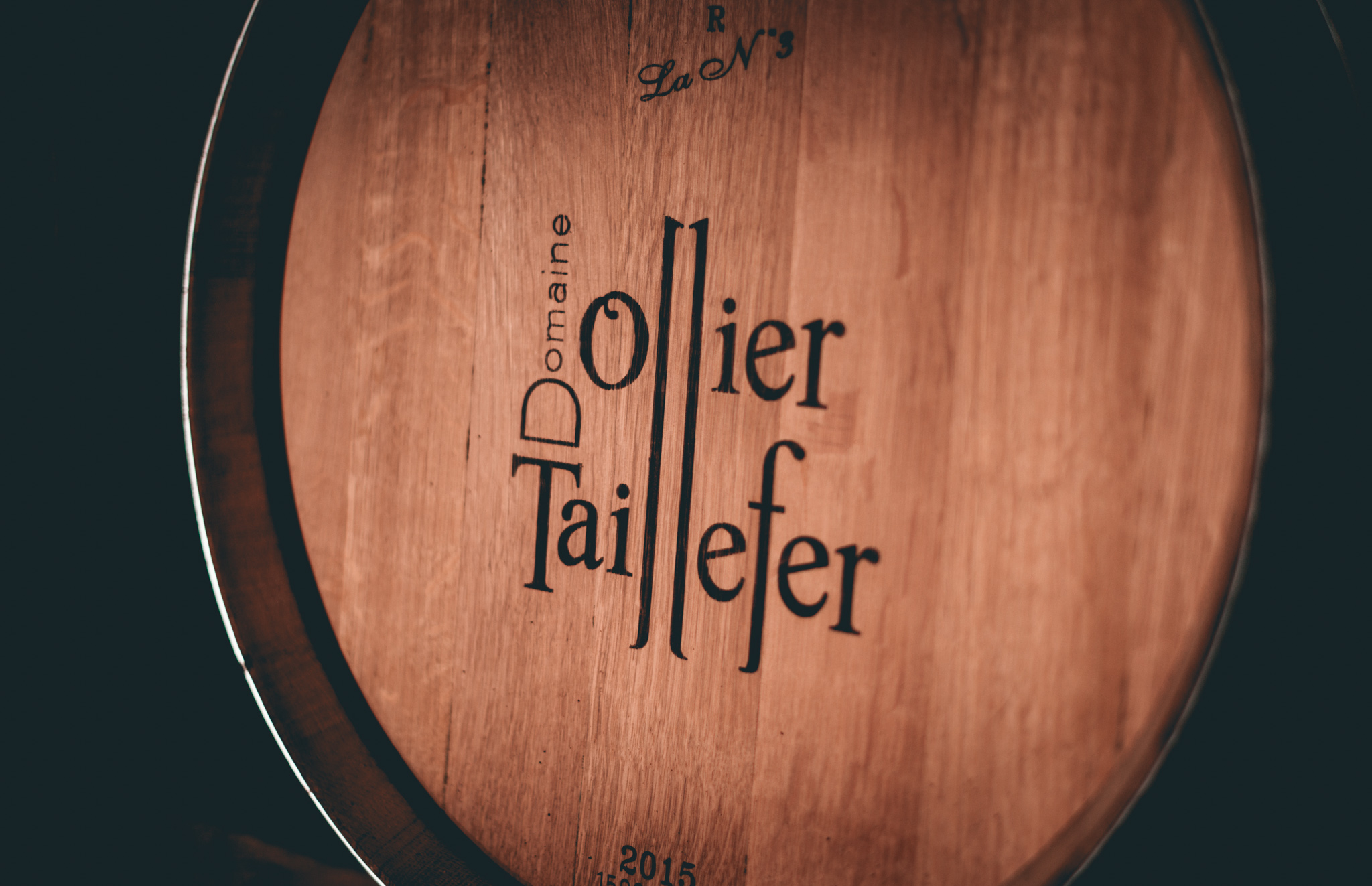 France : Languedoc : Domaine Ollier Taillefer in Faugeres