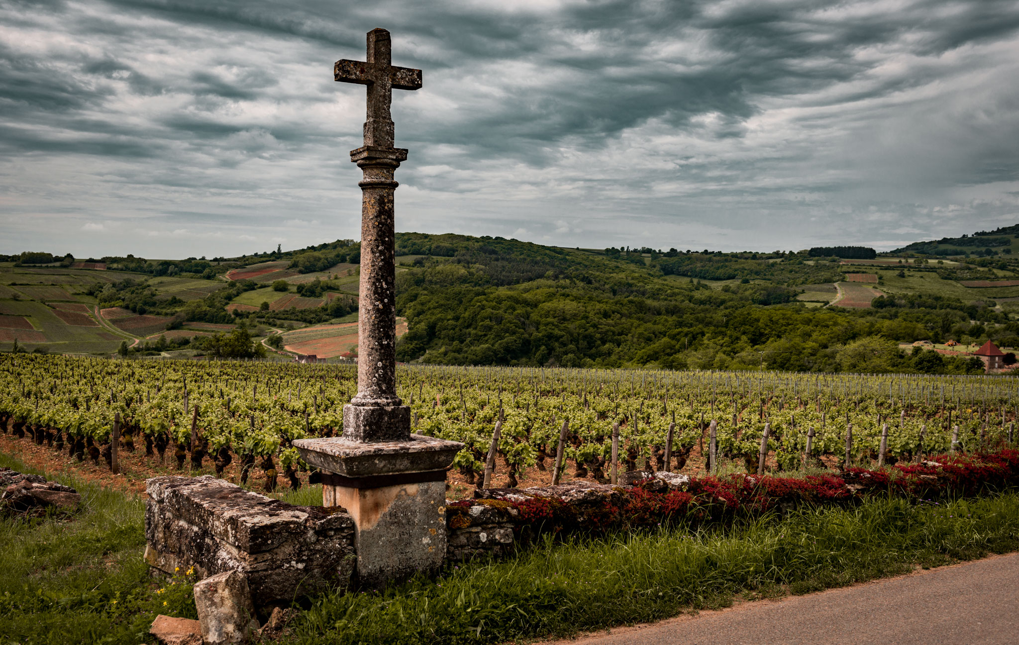 Burgundy : Cote de Beaune : Maranges : La Fussiere vineyard