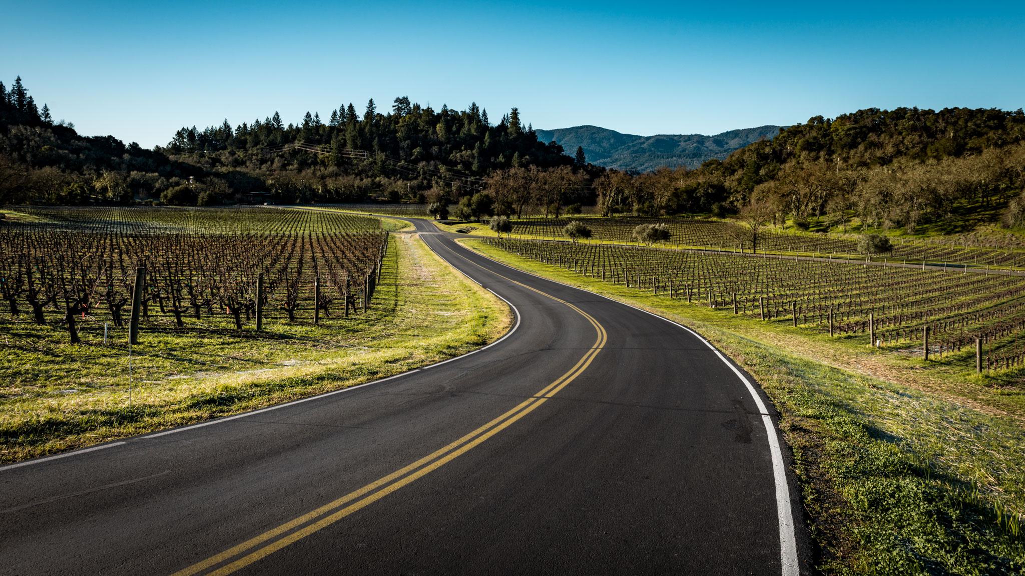 California : Napa Valley : Taplin Rd